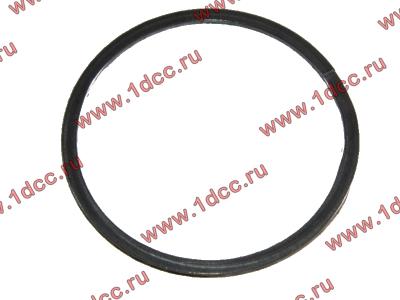 Кольцо уплотнительное выпускного коллектора H2 HOWO (ХОВО) VG260110162 фото 1 Брянск