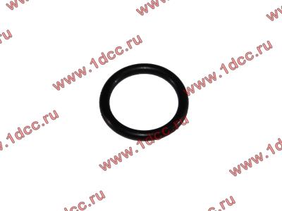 Кольцо уплотнительное форсунки резиновое H2/H3 HOWO (ХОВО) VG609070080 фото 1 Брянск
