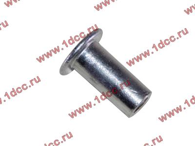 Заклепка алюминиевая 10х24 H2/H3 HOWO (ХОВО) 189000340068 AL фото 1 Брянск