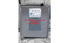 Радиатор HANIA E-3 336 л.с. фото Брянск