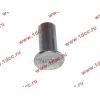Заклепка алюминиевая 10х24 H2/H3 HOWO (ХОВО) 189000340068 AL фото 2 Брянск