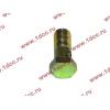 Болт пустотелый М10х1,0 (штуцер топливный) H HOWO (ХОВО) 81500070054 фото 3 Брянск