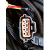 Жгут электропроводки двигателя H3 HOWO (ХОВО)  фото 8 Брянск
